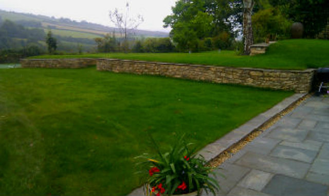 photo of garden and wall